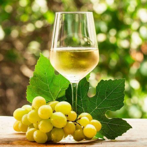 Hawkes Bay Wine