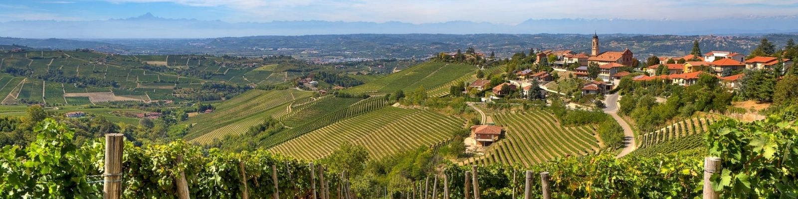 Langhe And Monferrato