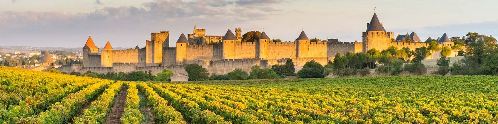 Languedoc And Roussillon Wine Region