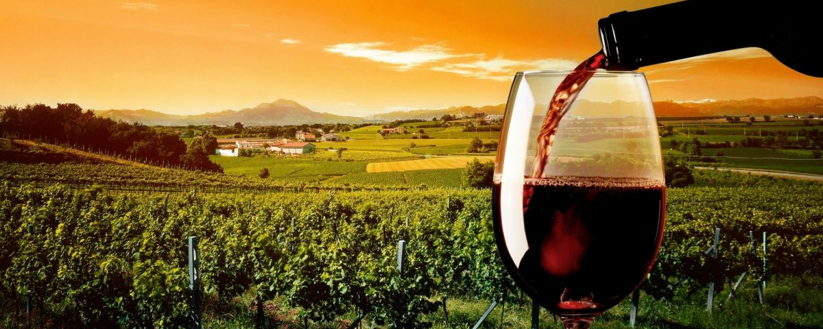 Wine Regions In England